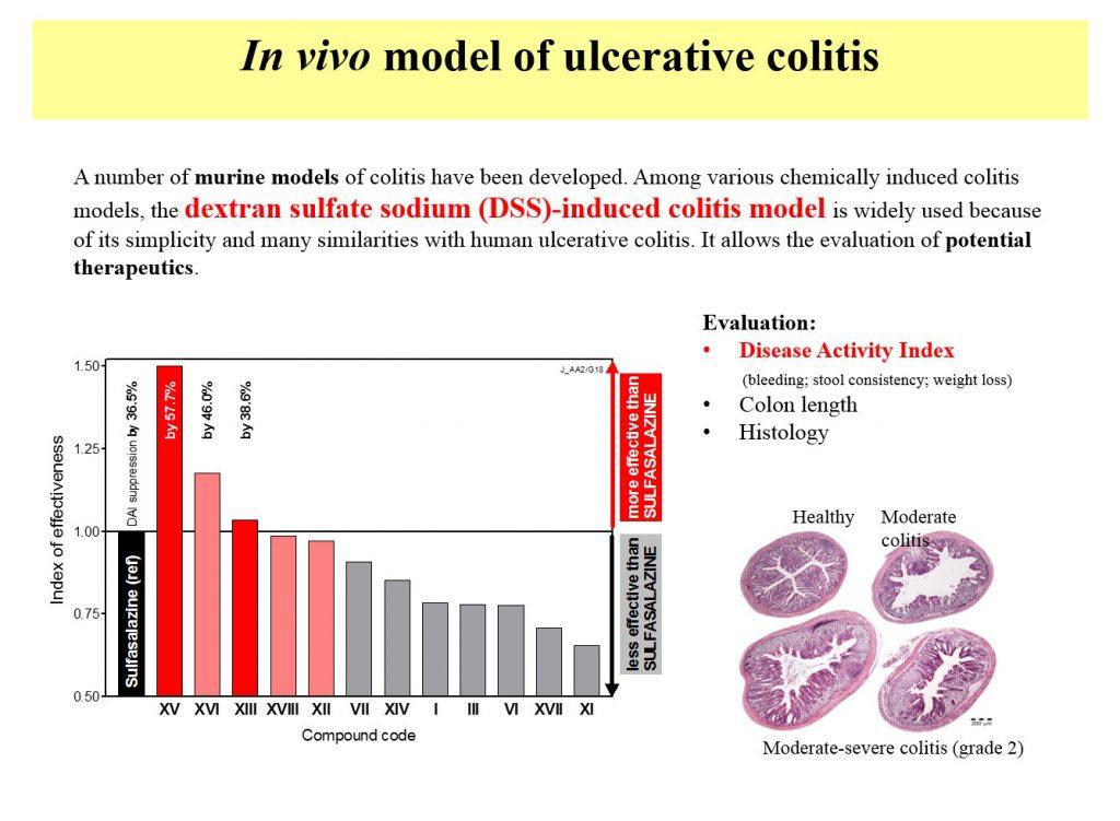 In vivo model of ulcerative colitis